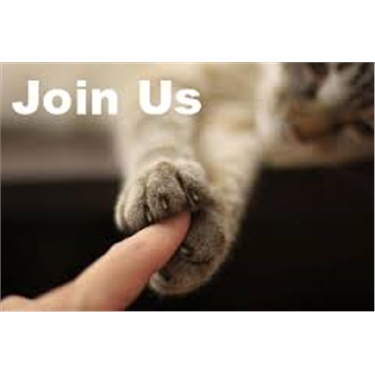 Join us today and help cats and kittens in your community