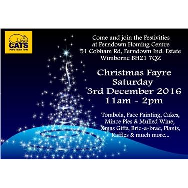 Fun & festivities at Ferndown Homing Centre