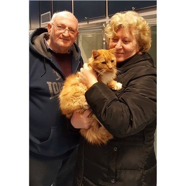 Microchip reunites cat with owners – 10 years after going missing
