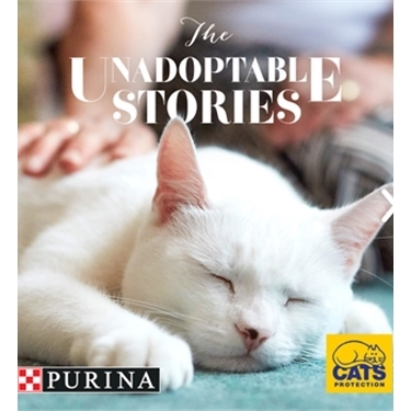 No cat is unadoptable