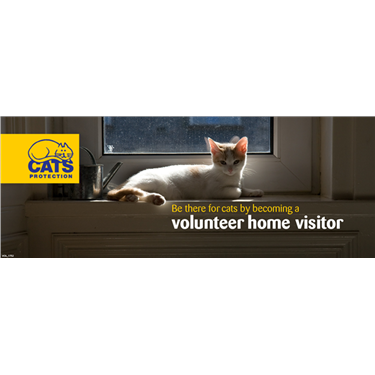 Could you be a Home Visitor?