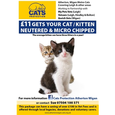 ⭐️ Neutering & Microchipping offer⭐️