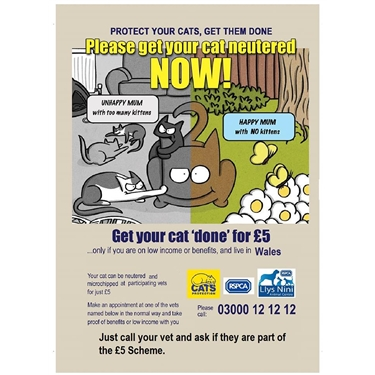 Wales neutering campaign