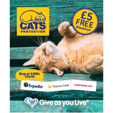 Book your summer travels and support cats