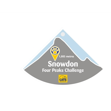 Conquer Snowdon from your sofa