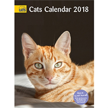 Last few calendars for sale