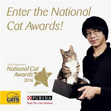 Enter the National Cat Awards!
