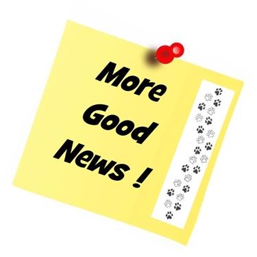 MORE GOOD NEWS !  18/7/2020
