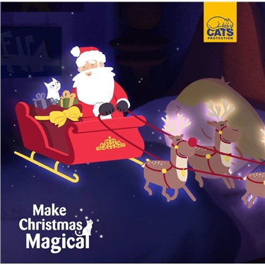 Make Christmas Magical