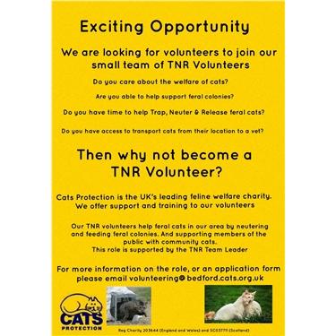 TNR Volunteering Opportunity