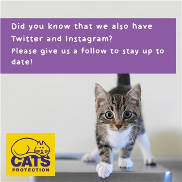 You Can Now Visit Us On Both Instagram And Twitter