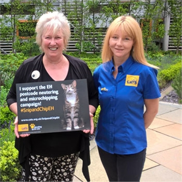 Snip and chip campaign to help cat owners in Edinburgh and the Lothians