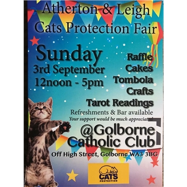 Cats Protection Fair