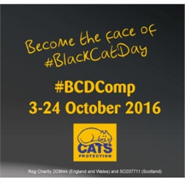 Do you own a brilliant black cat? Enter our competition