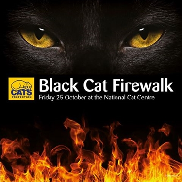 Black Cat Firewalk