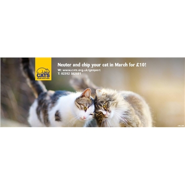March is £10 snip & chip month!