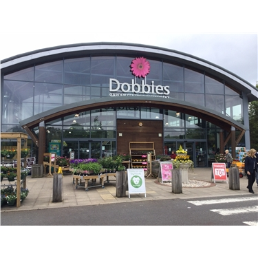 Tin Collecting at Dobbies