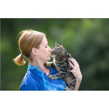 Cat Fosterers Desperately Needed