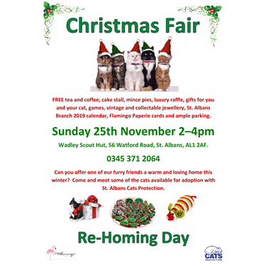 Christmas Fayre Homing Day
