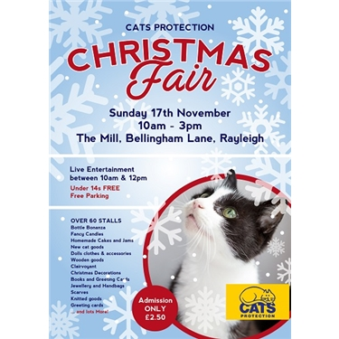 Stallholders wanted for our Christmas Gift Fair