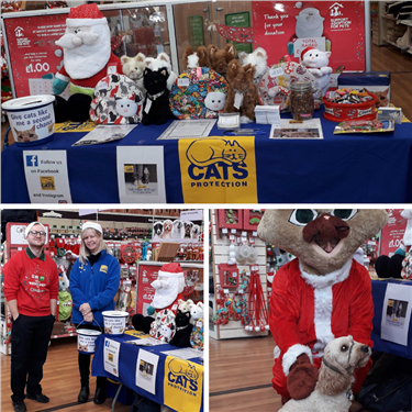 Pets At Home Santa Paws Event