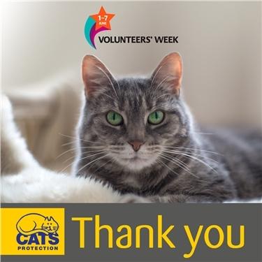 This is Volunteers Week!
