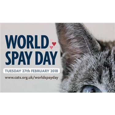 5 FREE spay/neuters for World Spay Day