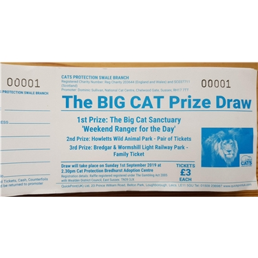 Big Cat Raffle