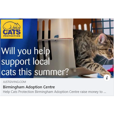 Will you help support local cats this summer?