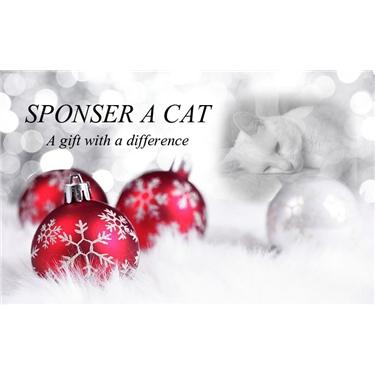 Sponsor A Cat - an ideal Xmas gift