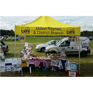 Great Linford Fun Day