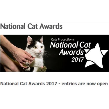 National Cat Awards 2017 - entries are now open