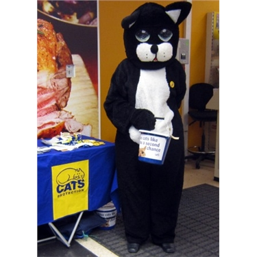 Tesco charity collection,  Update