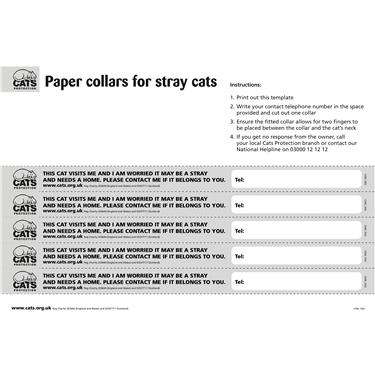 Paper collars PRINT HERE