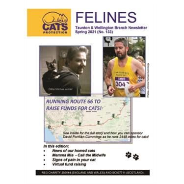 Felines Newsletter Spring 2021