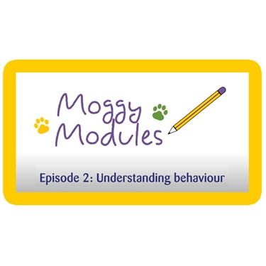 Moggy Modules for children - Episode 2