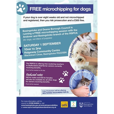 Neuter your cat for £5 - vouchers available on Saturday 1st September!!
