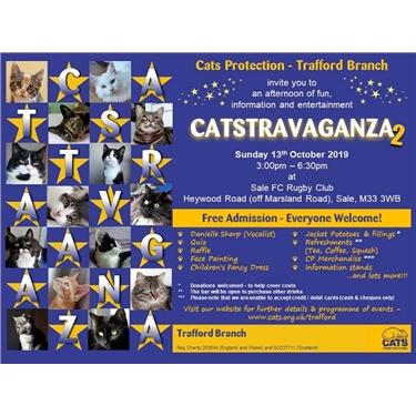 Catstravaganza 2 2019
