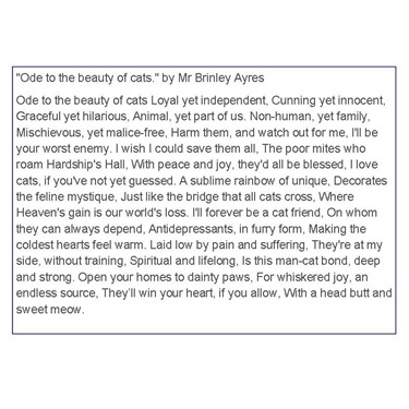 An Ode to the beauty of cats