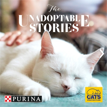 The Unadoptable Stories: PURINA and Cats Protection collaboration