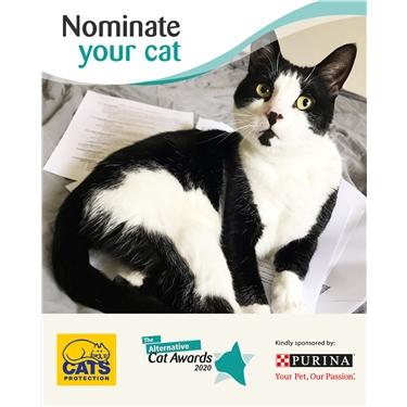 The Alternative Cat Awards 2020!