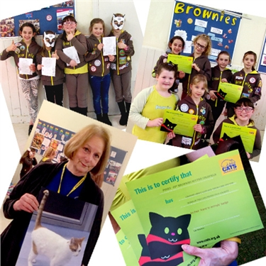 Sutton Coldfield Brownies play cat-and-house ...