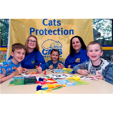 Kiddy Cat Fun Workshop coming up soon!