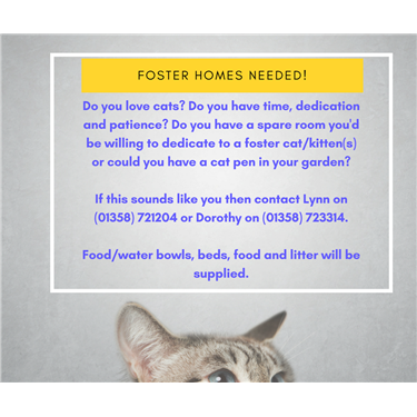 Volunteer Fosterer Appeal