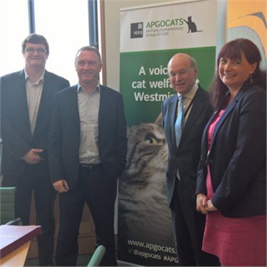 DEFRA minister sets out a plan to support felines with Cats Protection