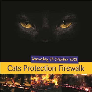 Do something great and walk over fire to help cats!