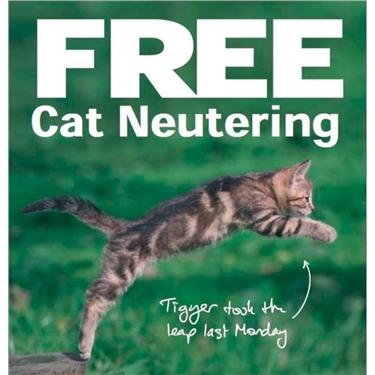 Free Cat Neutering