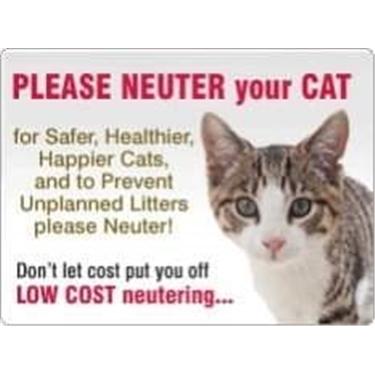 Please neuter your cat!