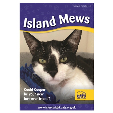 Our Isle of Wight Cats Protection Newsletter is now out!