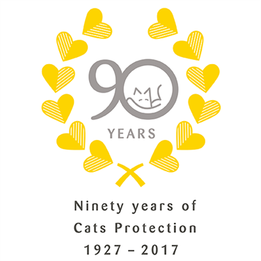 Text Giving Campaign for our 90th Anniversary